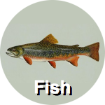 fish-circ-label